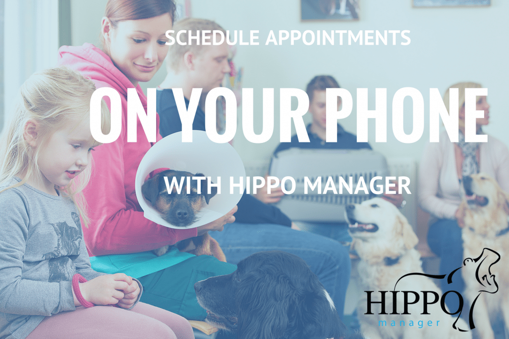 schedule appointments from your phone