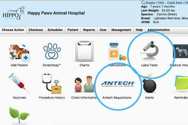 antech lab integration in hippo manager