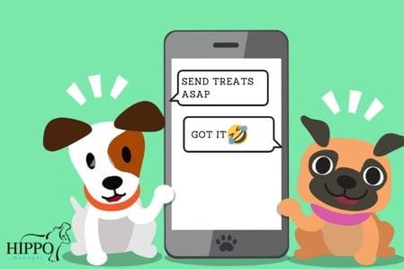 best veterinary practice text messaging cartoon dogs texting