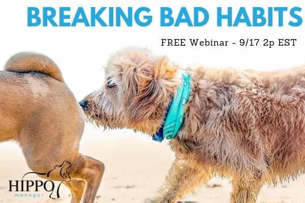 breaking bad habits at your veterinary practice free webinar