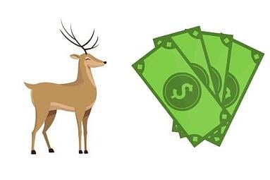 bringing in the bucks revenue by category veterinary report