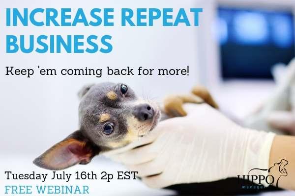 july 2019 free training webinar increasing repeat business