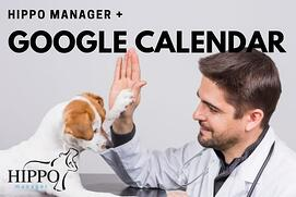 managing veterinary appointments