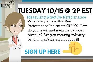 october 2019 free veterinary software training webinar practice performance and kpis