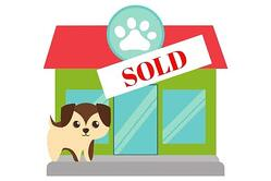 veterinary multi-unit consistent pricing veterinary practice sold
