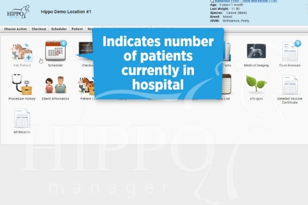 whiteboard in-hospital appointment status options current patients