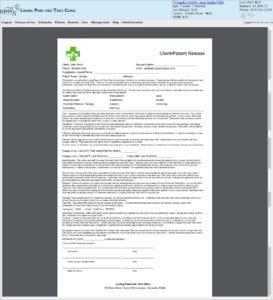 custom form veterinary practice software