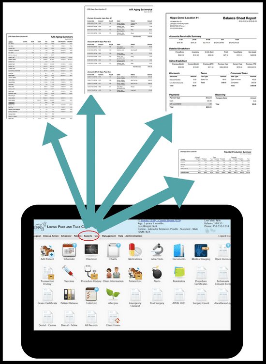 Financial Reporting Veterinary Software