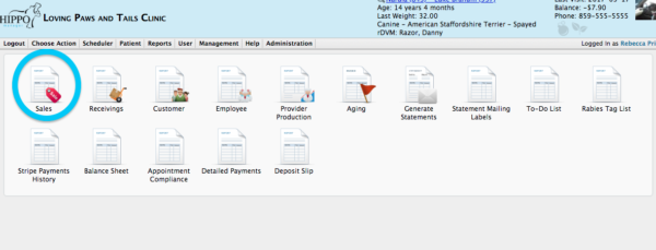 How to run end of day reports in veterinary software detailed sales