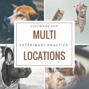 software for multi location veterinary practices