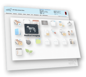 Hippo Manager Medical Imaging - DICOM Icon