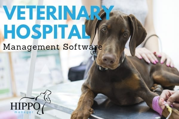 veterinary hospital management software lab exam table