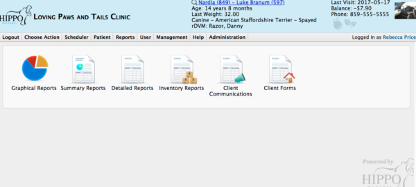how to run veterinary software reports