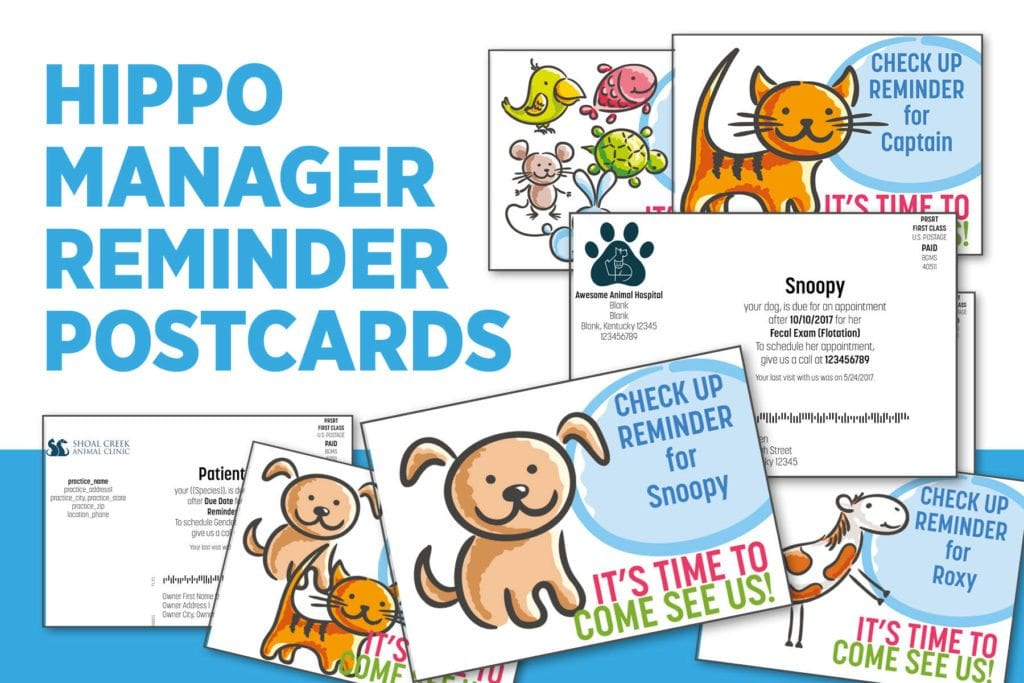 Mailed Veterinary Postcard Reminders