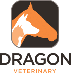 Dragon Veterinary