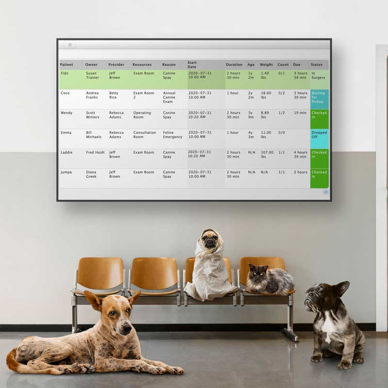 Real-time Status of Your Practice