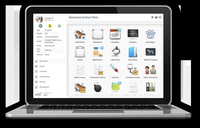 Hippo 2.0 on Laptop